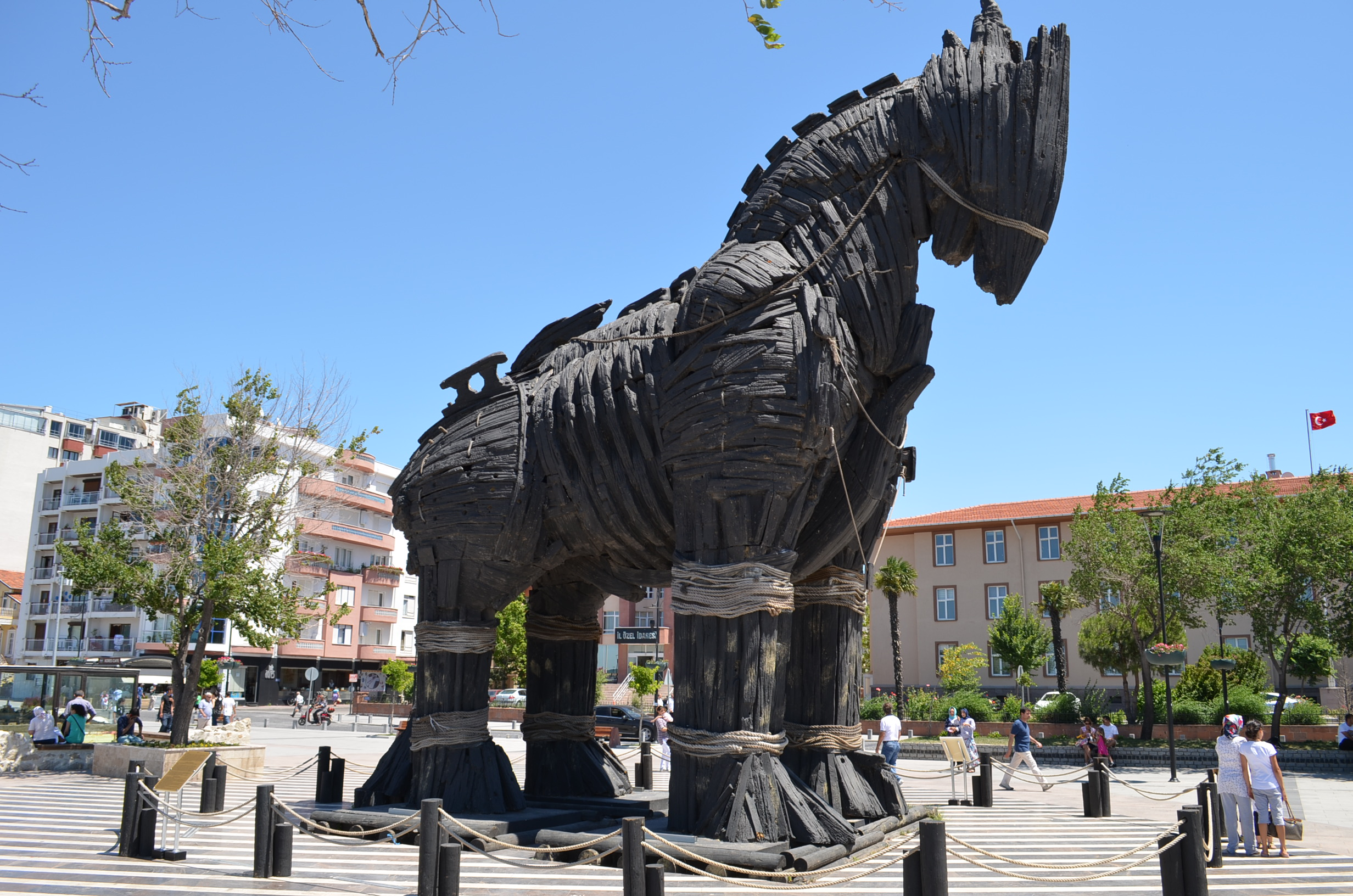 My Trojan Horse Analogy And Homology Manual Guide