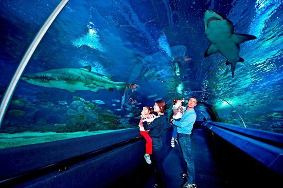 18 awesome things to do with kids in Istanbul