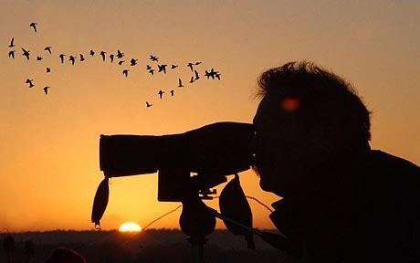 Why Turkey is a birdwatcher's heaven