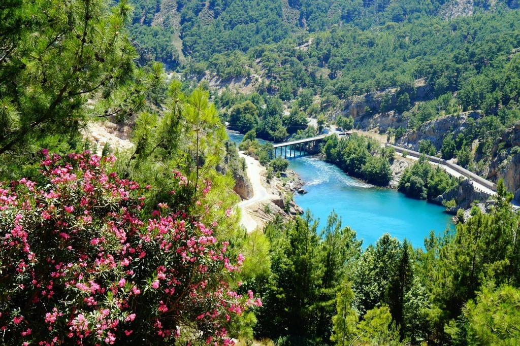 Turkey's fascinating flora and fauna