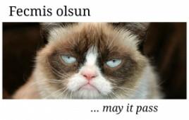 12 جملة تركية مفيدة في تعاملاتك