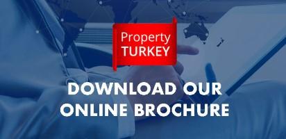 download our online borchour