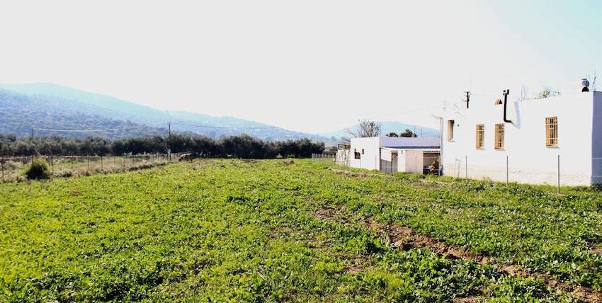 Bodrum land for sale