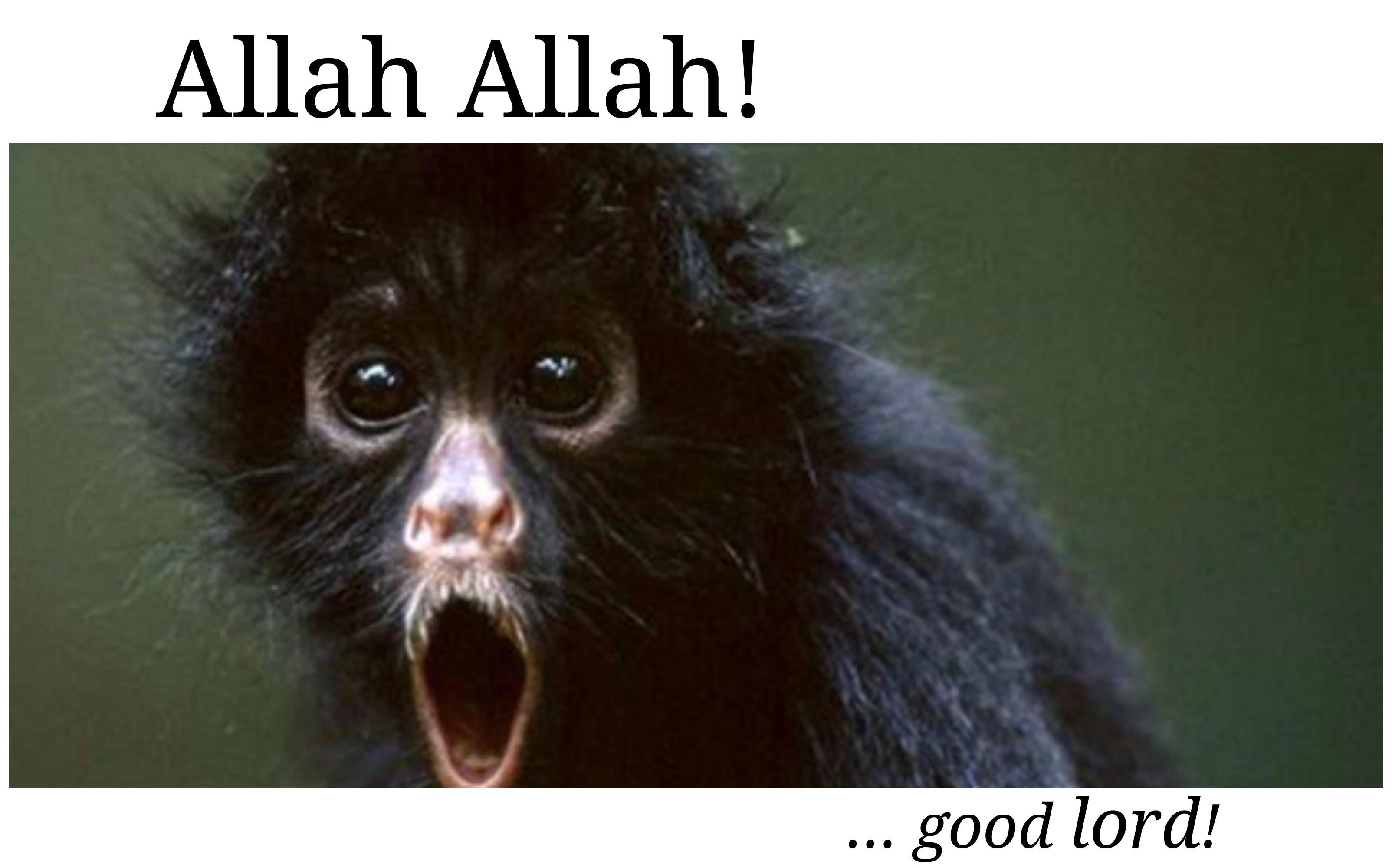 Allah Allah Turkish language