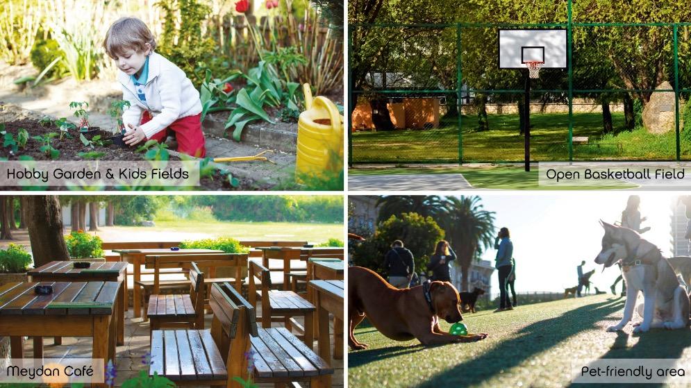 Social facilities
