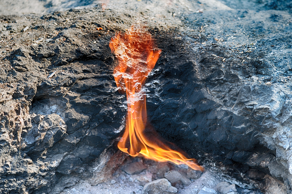Chimera burning flames