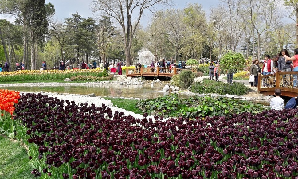 美丽的埃米尔甘公园