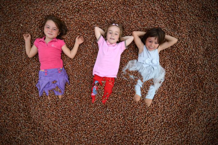 Hazelnuts in Turkey