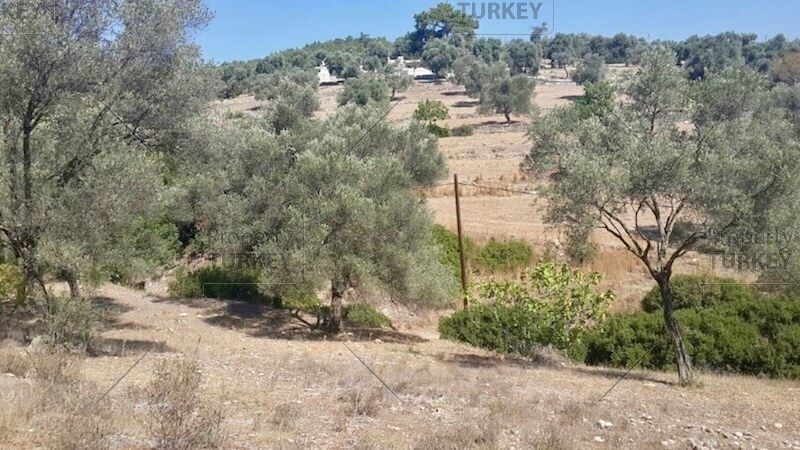 Buy land in Turkey | Land for sale in Turkey - Property Turkey