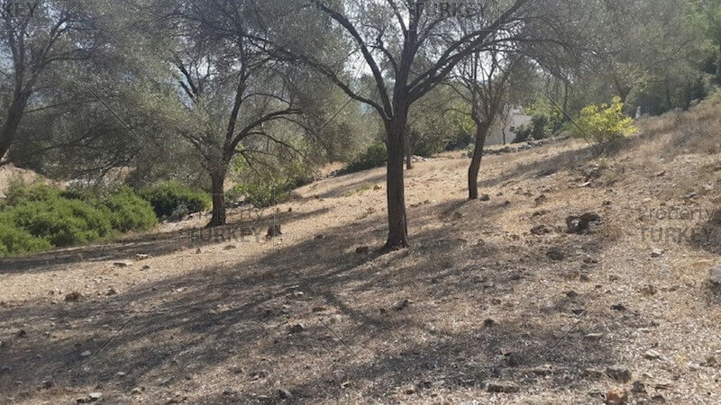 Bodrum plot for sale