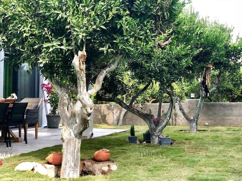 Residences garden