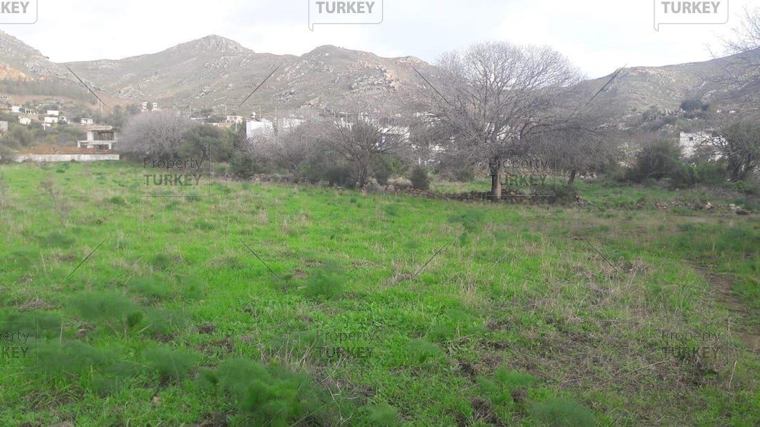 Large plot for sale in Gumusluk