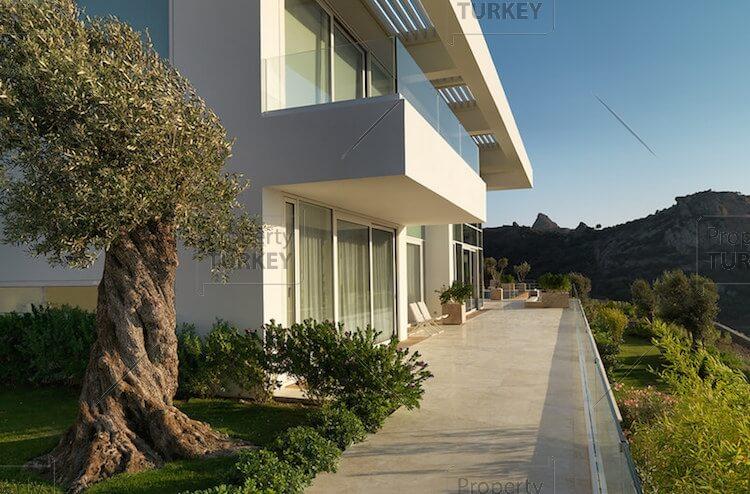 Exterior look of the villa