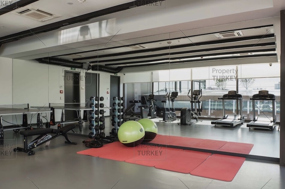 Complex fitness space