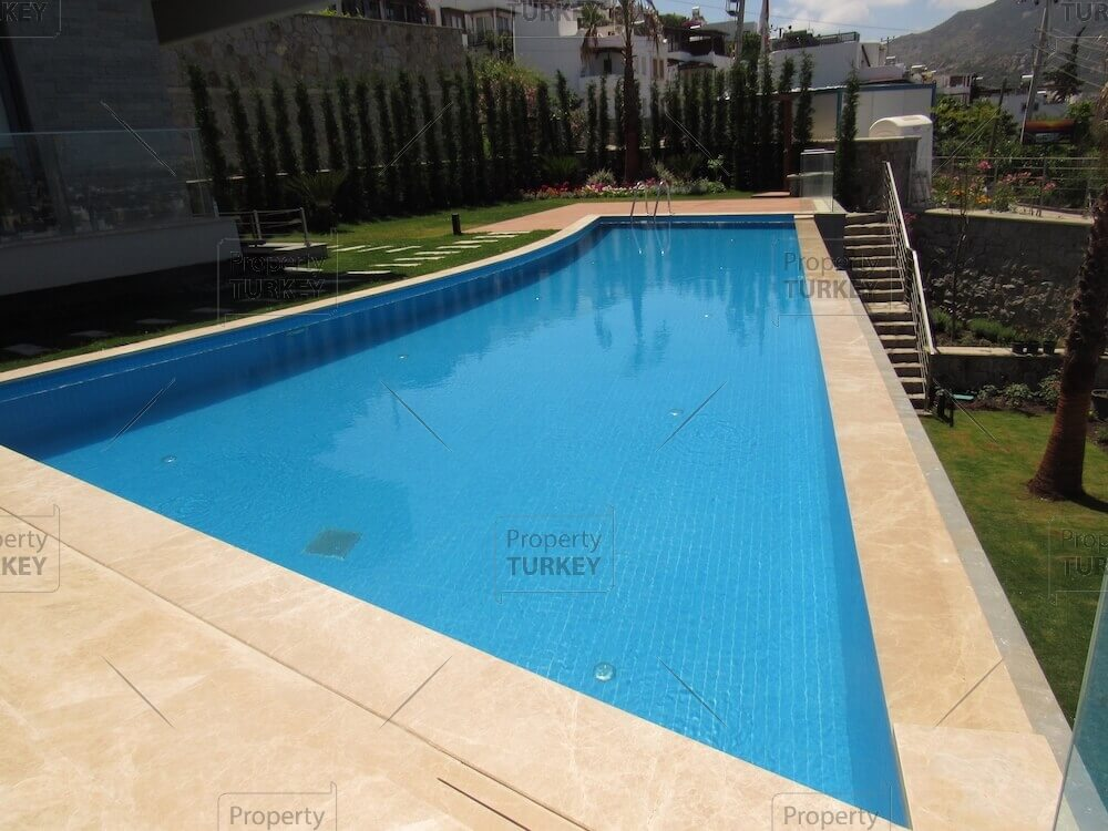 Views of the pool