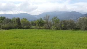 Land in Fethiye