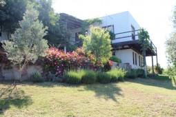 Gumusluk villa