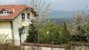 Villa for sale in Sapanca Istanbul