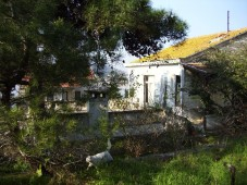 Yali property Princess Island