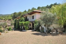 Uzumlu countryside cottage for sale