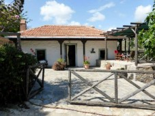 Nature surroundings in bungalow for sale