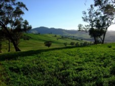 Land in Turkbuku
