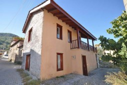 Uzumlu village property